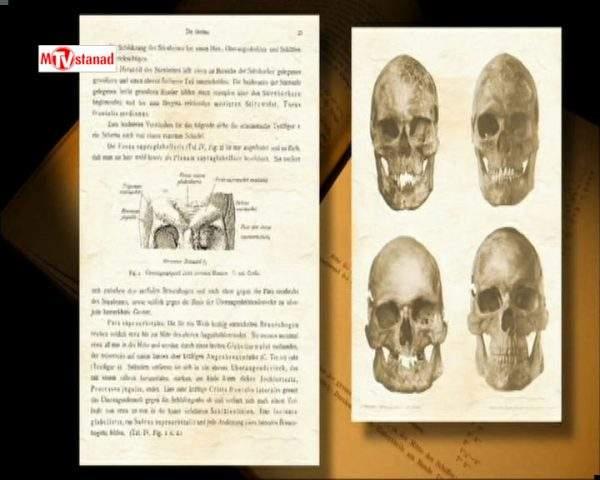 دانلود مستند شکارچیان عصر یخبندان از مجموعه اسرار تمدن های گمشده