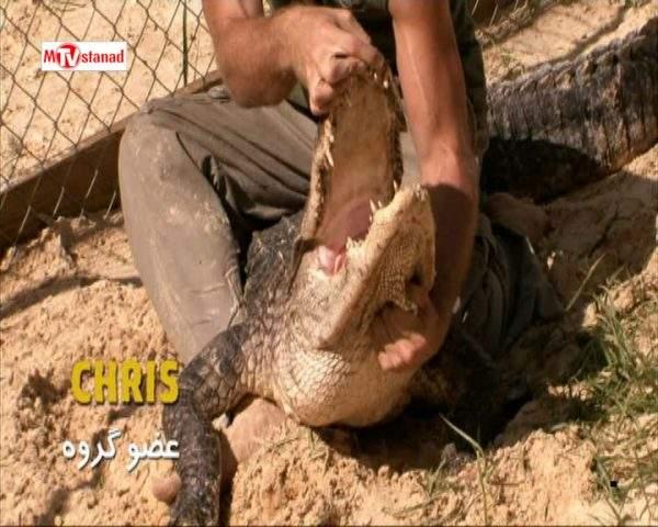 دانلود مستند تمساح بان - 18 از مجموعه تمساح بان