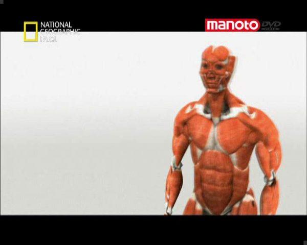 دانلود مستند بدن شگفت انگیز انسان از مجموعه برنامه علمی
