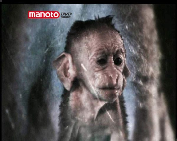 دانلود مستند امپراطوری میمون ها - 1 از مجموعه امپراطوری میمون ها