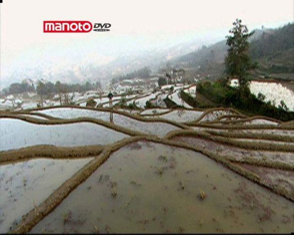 دانلود مستند چین باستان: کشاورزی از مجموعه تاریخچه