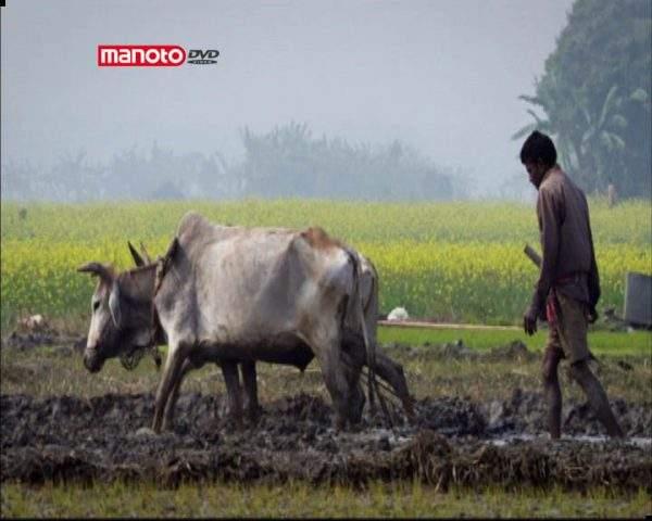 دانلود مستند گنگ، رودخانهی زندگی بخش از مجموعه نادیدههای طبیعت هندوستان