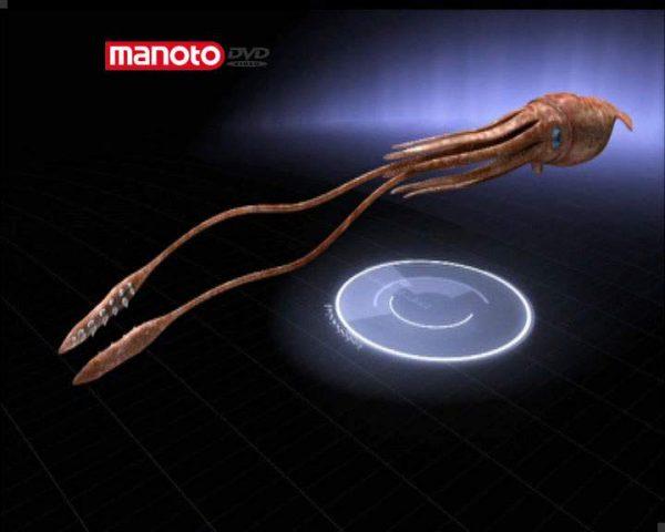 دانلود مستند ماهیهای مرکّب از مجموعه جستجوی هیولا