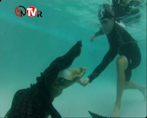 دانلود مستند تمساح بان - 5 از مجموعه تمساح بان