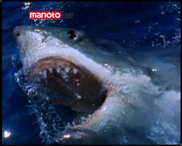 دانلود مستند قاتلان زیر آب از مجموعه درندگان