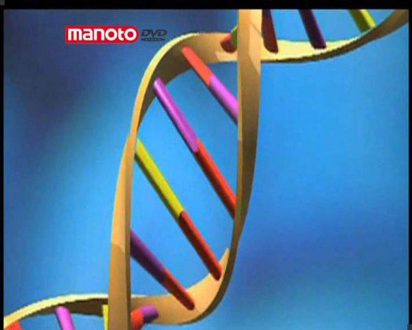 دانلود مستند رمزگشایی کد از مجموعه اسرار ژن