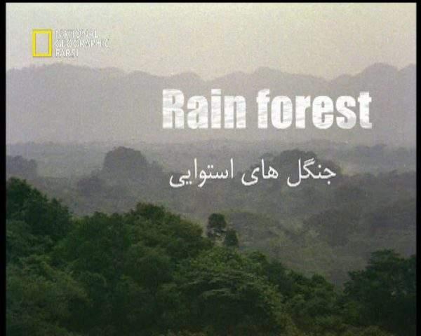 دانلود مستند جنگل های استوایی از مجموعه قاتلین بالفطره
