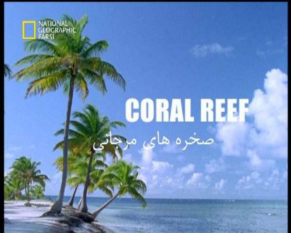 دانلود مستند صخره های مرجانی از مجموعه قاتلین بالفطره