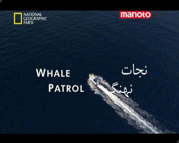 دانلود مستند نجات نهنگ از مجموعه حیات وحش