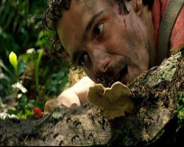 دانلود مستند در قلب جنگل از مجموعه مرگ دور است