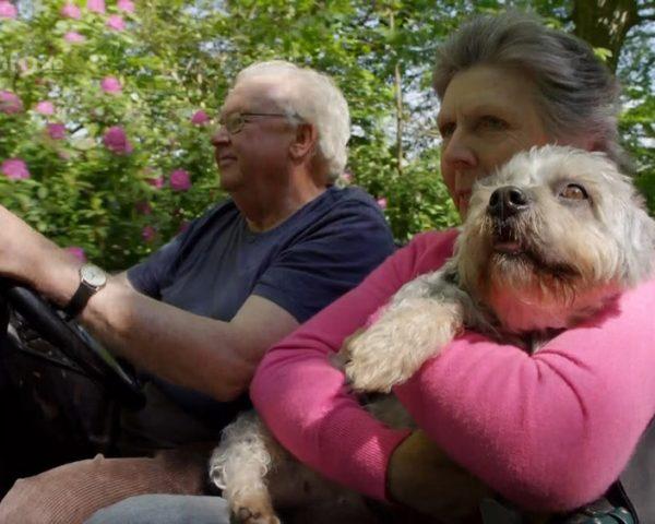 دانلود مستند اسرار سگ ها با دوبله فارسی شبکه منوتو