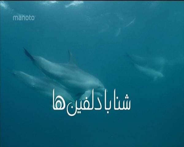 دانلود مستند شنا با دلفین ها با دوبله فارسی شبکه منوتو
