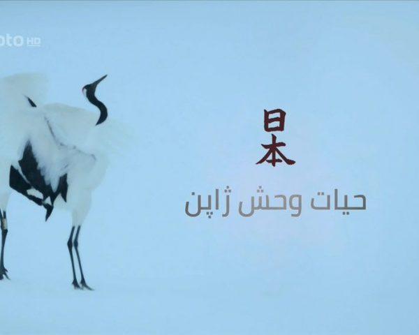 دانلود مستند حیات وحش ژاپن : هونشو با دوبله فارسی شبکه منوتو