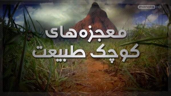 دانلود مستند معجزههای کوچک طبیعت با دوبله فارسی شبکه منوتو