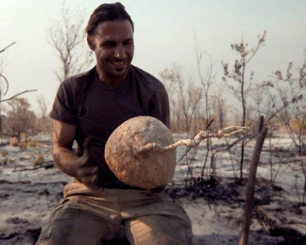 دانلود مستند صحرا با دوبله شبکه نشنال جئوگرافی فارسی از مجموعه راهکارهای هازن برای بقا