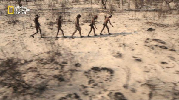 دانلود مستند مناطق گرمسیری با دوبله شبکه نشنال جئوگرافی فارسی از مجموعه راهکارهای هازن برای بقا