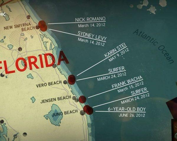 دانلود مستند آشفتگی در فلوریدا با دوبله شبکه نشنال جئوگرافی فارسی از مجموعه وقتی کوسه حمله می کند
