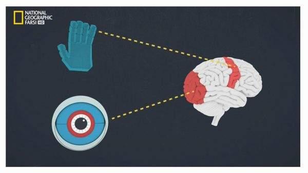 دانلود مستند جریان چیه؟ با دوبله شبکه نشنال جئوگرافی فارسی از مجموعه بازی های ذهن