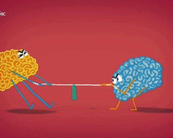 دانلود مستند باور کن ! با دوبله شبکه نشنال جئوگرافی فارسی از مجموعه بازی های ذهن