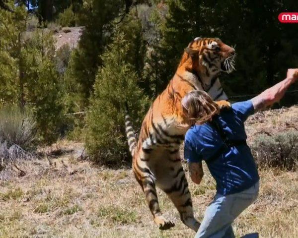 دانلود مستند رندی میلر از مجموعه رفاقت با حیوانات