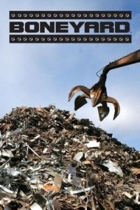 Boneyard (TV series)