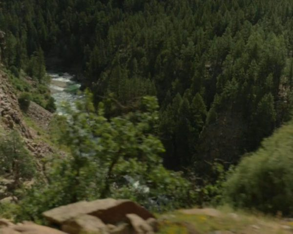 دانلود مستند جنگل ملی سنخوان از مجموعه کاوشگران طبیعت با دوبله شبکه منوتو