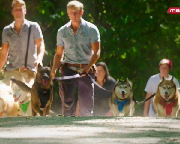 دانلود مستند مربیان سگ - 3 از مجموعه مربیان سگ با دوبله شبکه منوتو
