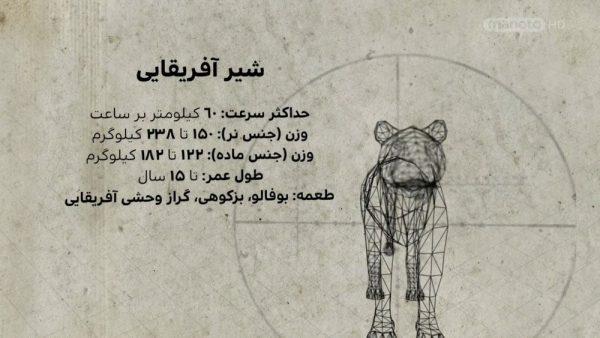 دانلود مستند شیر ها از مجموعه شکارچیان درنده با جوئل لمبرت با دوبله شبکه منوتو