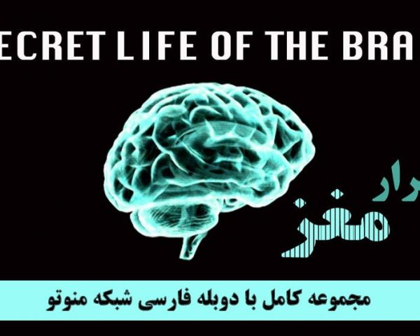 مجموعه کامل اسرار مغز
