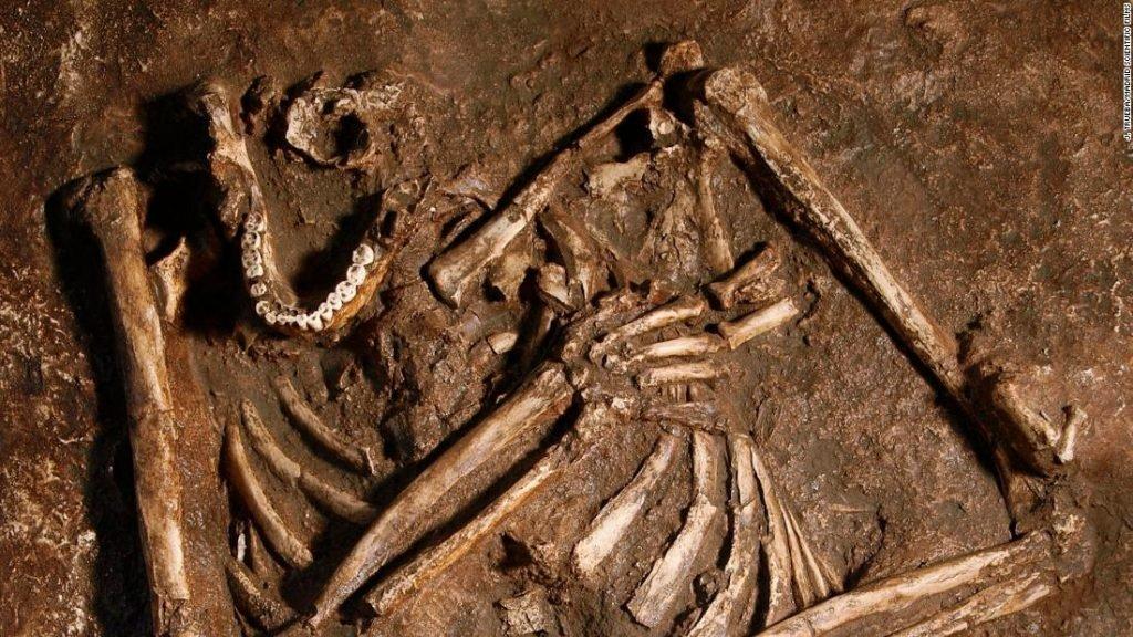 اسکلت انسان اولیه