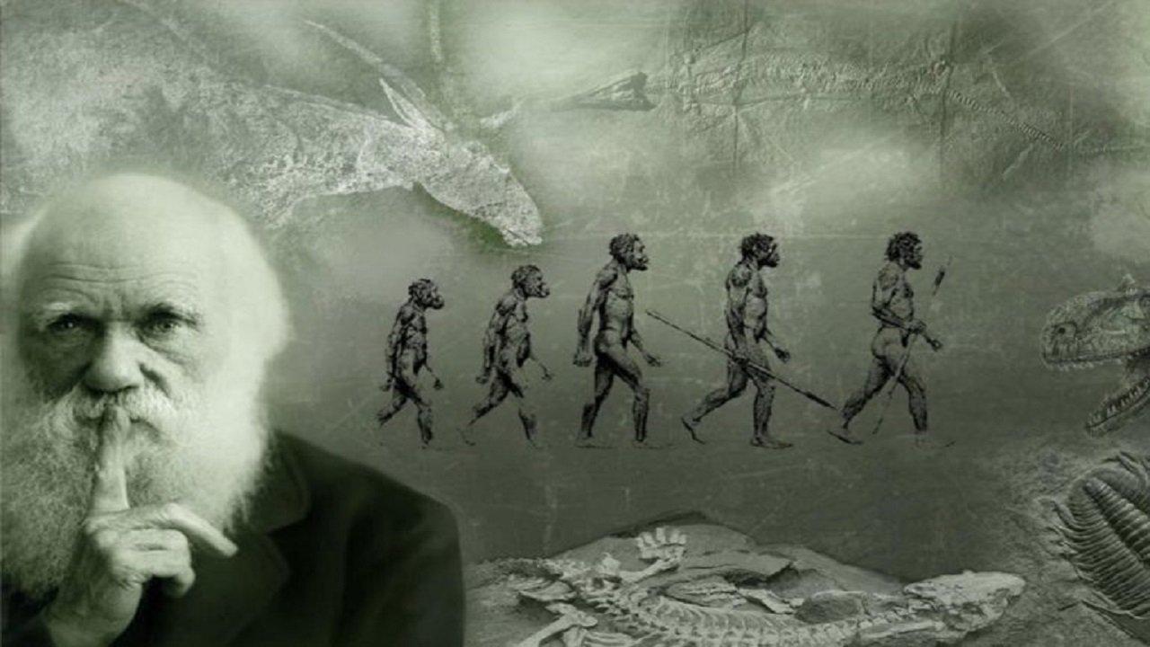 مستند بررسی نظریه داروین