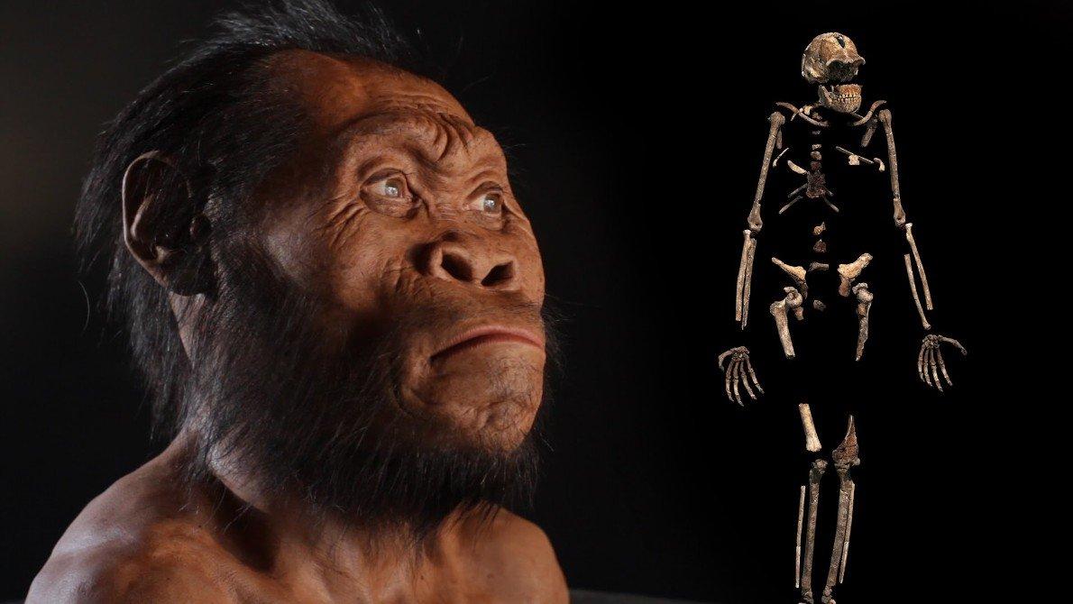 عکس انسان های اولیه