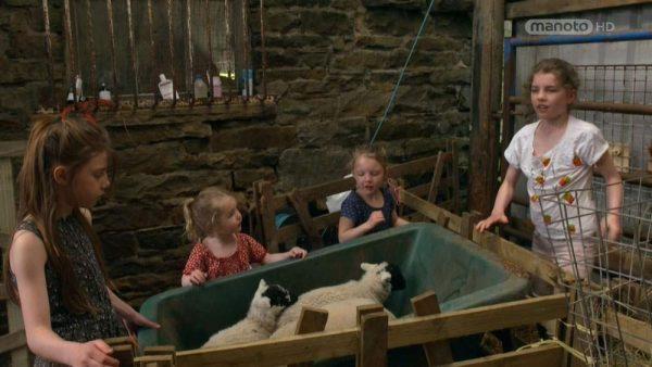 دانلود مستند مزرعه ما - 2 از مجموعه مزرعه ما با دوبله شبکه منوتو