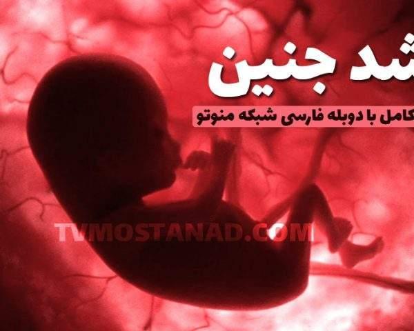 دانلود همه قسمت های مستند رشد جنین با دوبله فارسی و کیفیت عالی